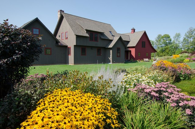 Black Eyed Susan Seeds Landscape Traditional with Bushes Grass Gray Exterior Gray Siding Lawn Natural Landscape