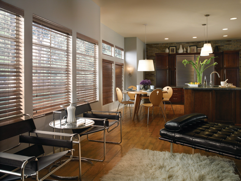 Blindsgalore Living Room Contemporary with Categoryliving Roomstylecontemporarylocationsan Diego 1
