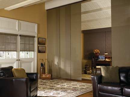 Blindsgalore Living Room Traditional with Living Room Panel Track Blinds Roller Shades