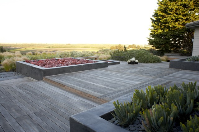 Cement Planters Deck Asian with Container Plant Deck Geometric Geometry Ipe Decking Low Maintenance