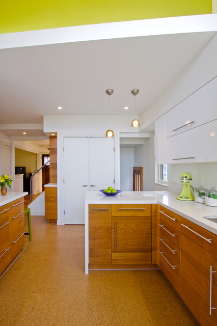 Cork Flooring Lowes Kitchen Contemporary with Addition Affordable Bold Color Cabinetry Clarity Classic Contemporary Corian
