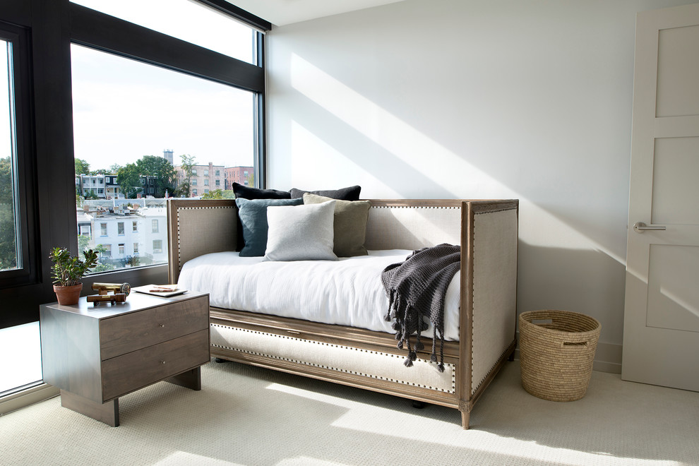 Daybed with Pop Up Trundle Bed Bedroom Transitional with Basket Bedding Carpet Cushions Daybed Door Dresser