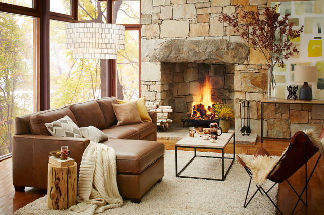 Dimplex Electric Fireplace Living Room Contemporary with Categoryliving Roomstylecontemporarylocationnew York