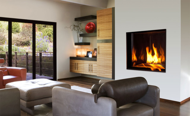 direct vent gas fireplace insert Living Room Contemporary with area rug built in cabinets Direct Vent Fireplace direct