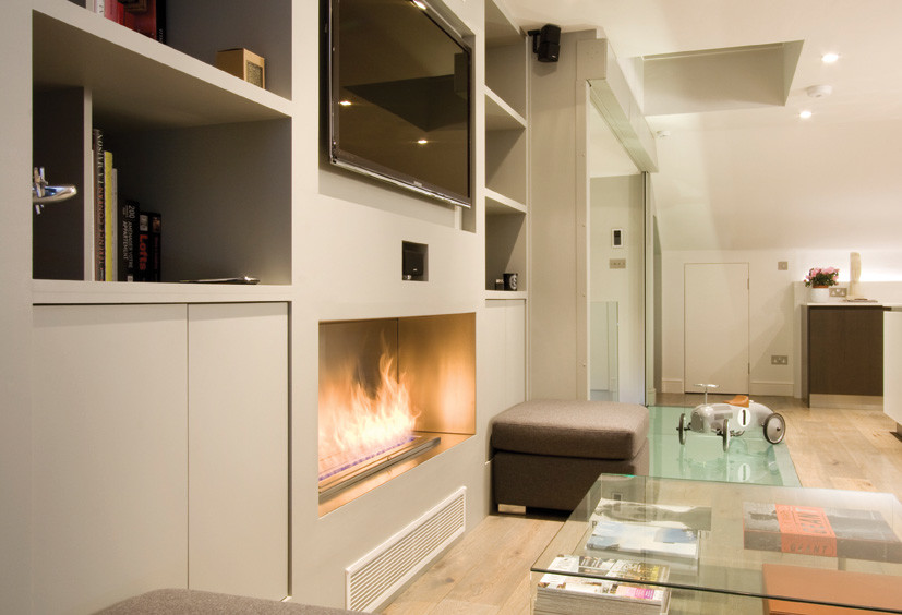 Ecosmart Fire Living Room Contemporary with Ecosmart Fire Ethanol Fire Fireplace Living Room2