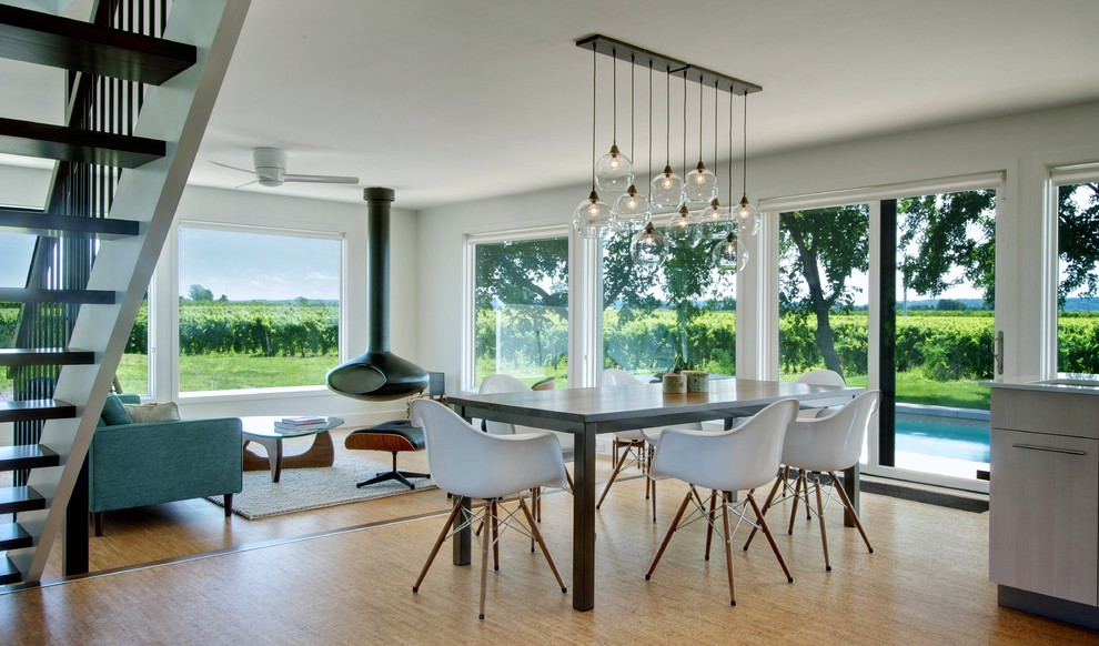 Edison Light Fixtures Dining Room Contemporary with Cluster Pendant Cork Floor Eames Lounge Chair1