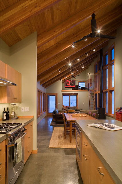 Electric Radiant Floor Heating Kitchen Contemporary with Black Ceiling Fan Glass Door Green Wall Loft Ladder