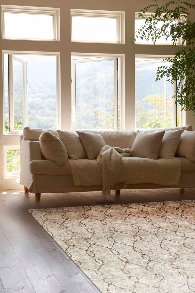 Feizy Rugs Living Room Traditional with Beige Feizy Rugs Home Living Room Neutral
