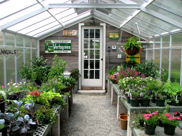 Green House Kits Garage and Shed Traditional with Annuals Barnboard Cement Blocks Concrete Blocks Conservatory Flowers Frosted
