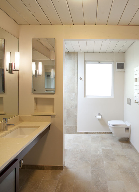 Handicap Toilets Bathroom Midcentury with Deco Sconce Modern Faucet Modern Sconce Niche Plant Ceiling