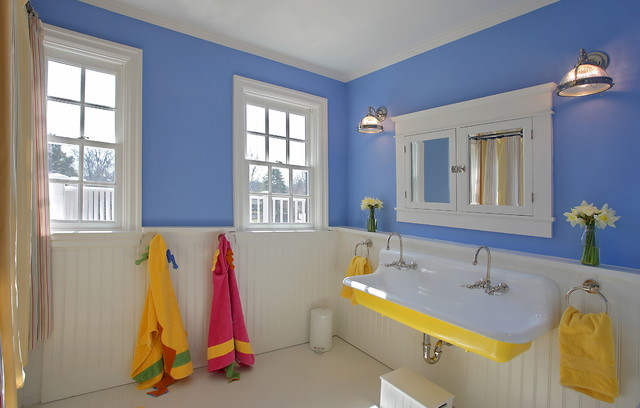 Kohler Apron Sink Bathroom Traditional with Beadboard Wainscoting Blue Walls Built in Medicine Cabinet Double Sink