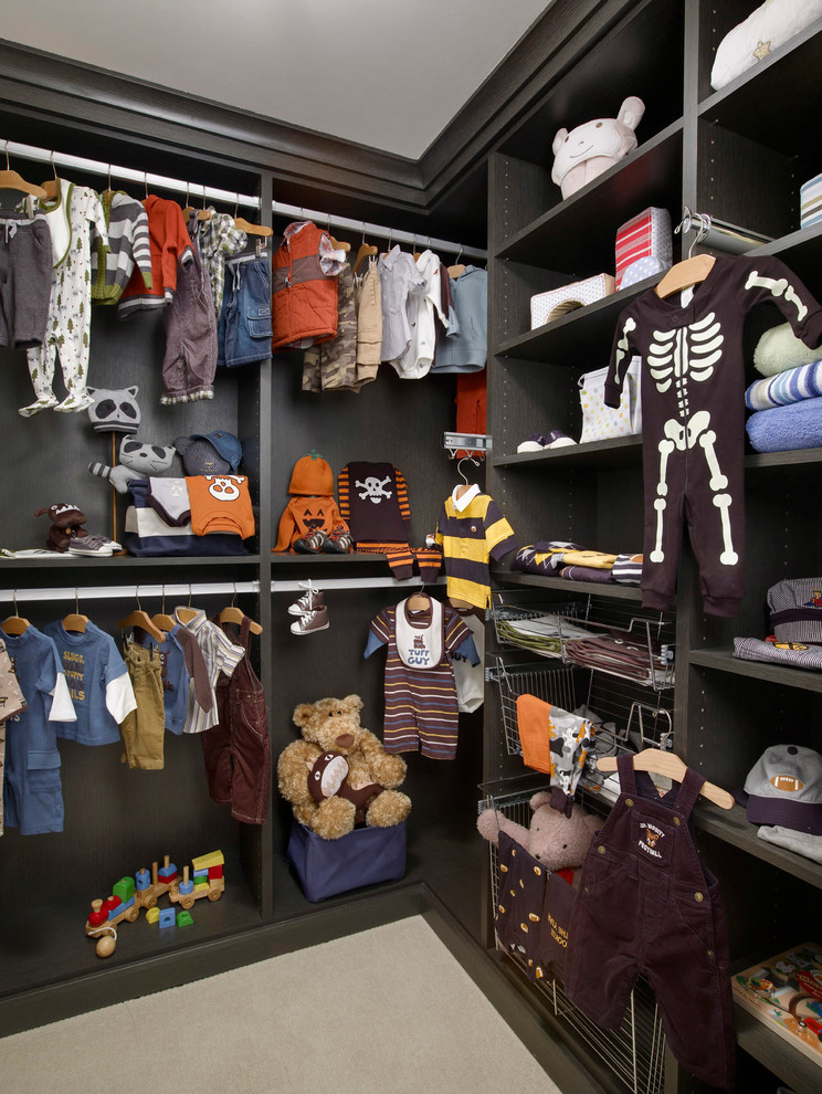 Lowes Closet Systems Closet Contemporary with Baby Room Built Ins Dark Colors Dressing Room