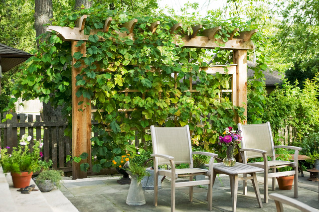 lowes fences Patio Traditional with mass planting outdoor furniture patio furniture Patio pavers potted