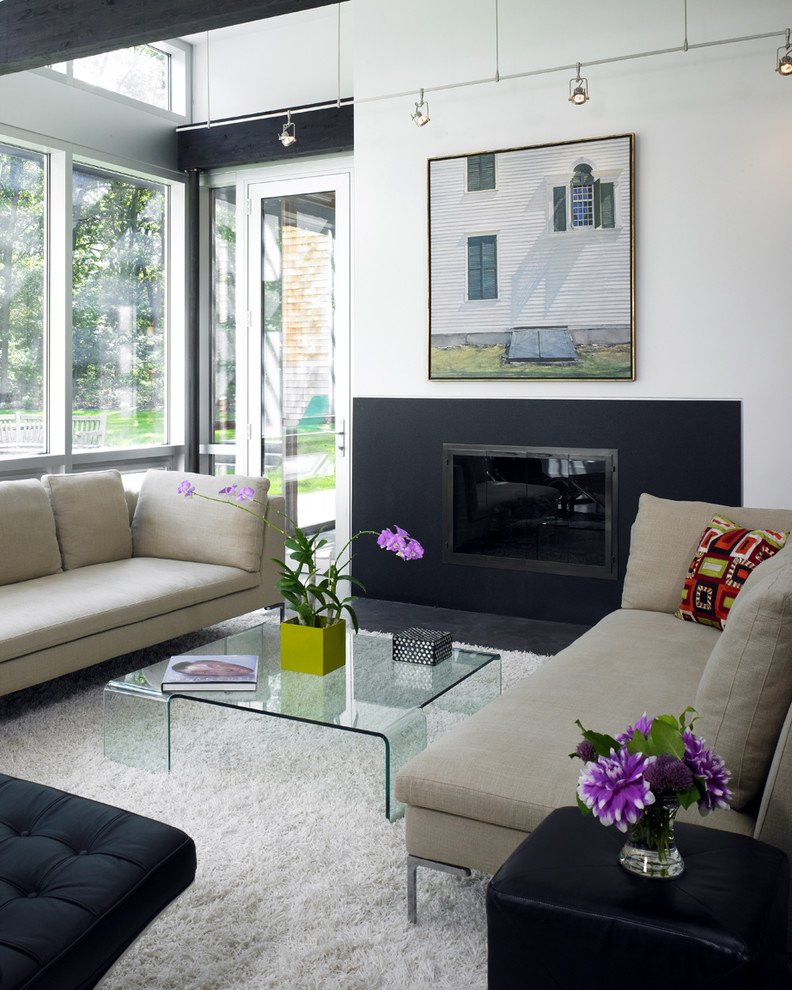 lucite coffee table Living Room Contemporary with Art Barcelona black white Fireplace glass glass