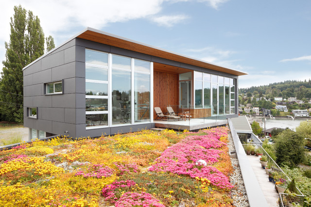 Milgard Windows Exterior Modern with Cladding Colorful Concrete Deck Flat Eave Flower Bed Friday