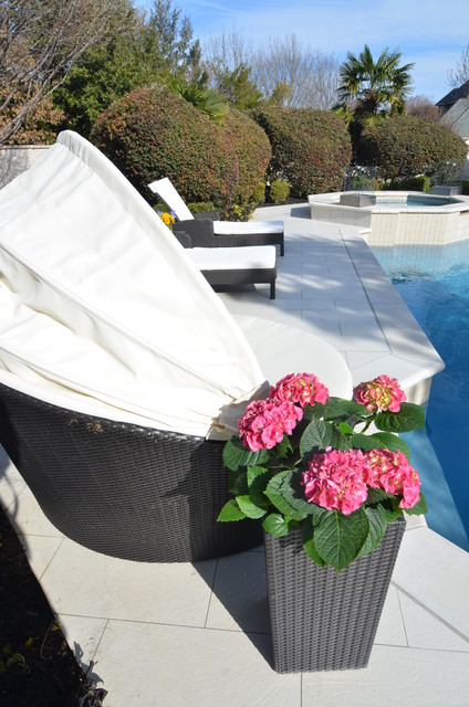 Papasan Cushions Spaces Contemporary with Contemporary Outdoor Design Contemporary Planter Fuchsia Hydrangea Modern Outdoor