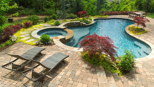 Pavestone Pavers Pool Traditional with Attached Spa Dwarf Trees Freeform Pool Freeform Swimming Pool