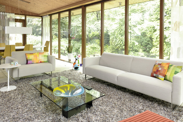 Awesome Shaggy Rugs For Living Room Pictures Decorating Design