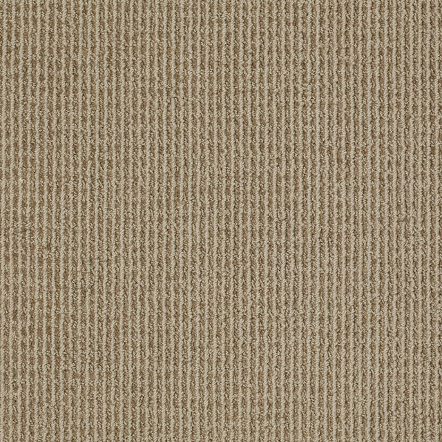 Shaw Area Rugssold Byshaw Floorsvisit Store Area Rugswith Sold Byshaw Floorsvisit Storecategoryarea Rugs Floors Contemporary Living Room Other Metro1