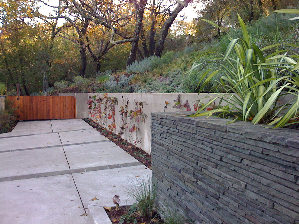 Stacked Stone Veneer Landscape Contemporary with Concrete Driveway Grass Hillside Low Maintenance Low