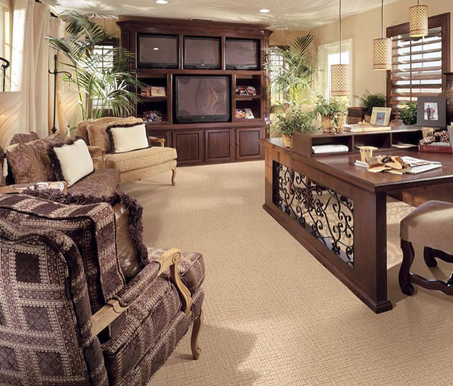 Stainmaster Carpet Living Room Contemporary With Color Custom Moda Pattern
