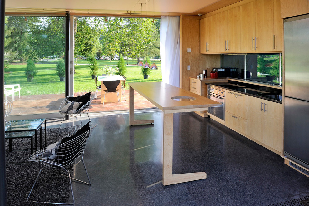 Stamped Concrete Patio Kitchen Midcentury with Black Rug Custom Cabinetry Exterior Door Glass