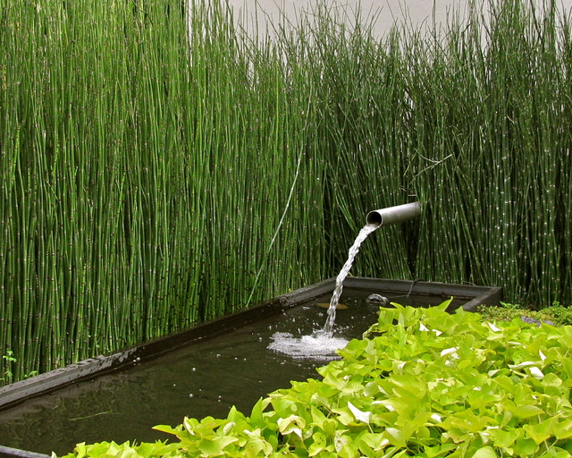 Tabletop Water Fountains Landscape Modern with Fountain Landscape Pond Tall Grass Water Feature Water Trough