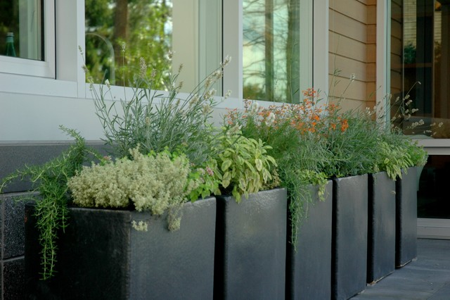 Urn Planters Spaces Rustic with Black Bowl Planter Container Garden Container Plant Geometric Geometry