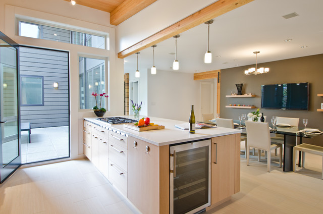 vissani beverage cooler Kitchen Contemporary with contemporary kitchen eat-in kitchen fir cabinets frosted glass pendants