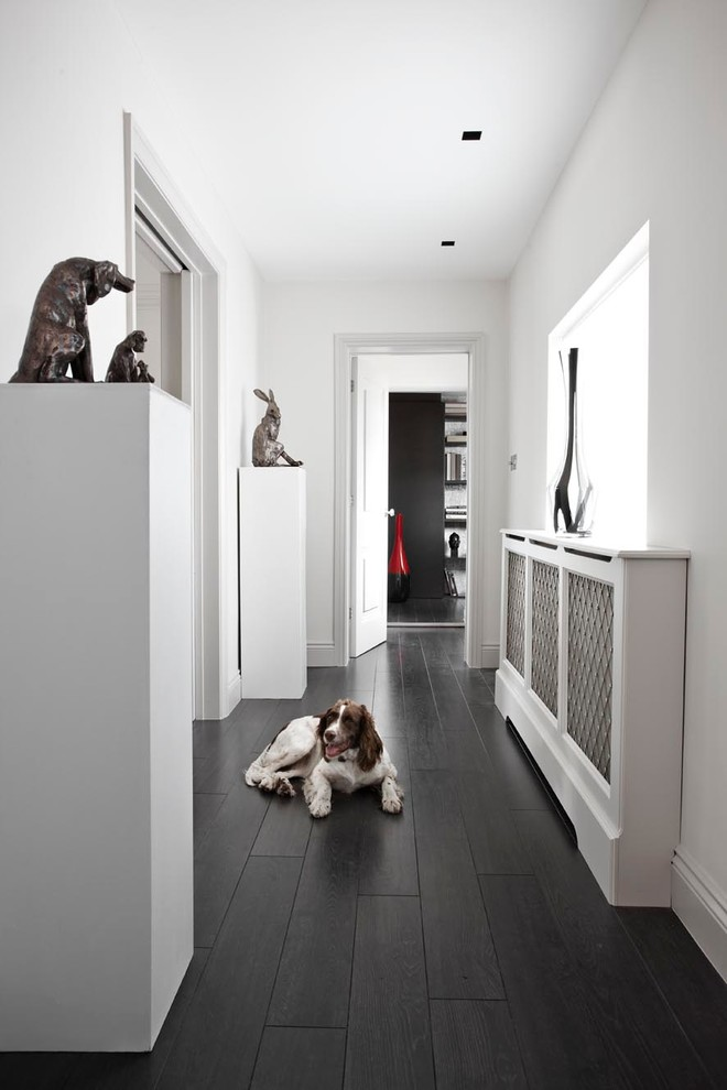 Wide Plank Laminate Flooring Hall Contemporary with Animal Sculpture Black and White Dark Wood