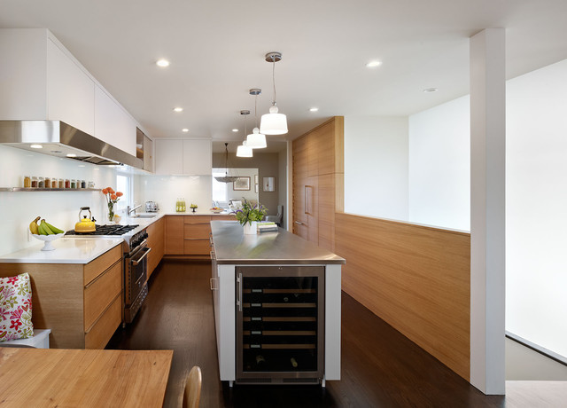Wine Chillers Kitchen Modern with Cabinet Front Refrigerator Ceiling Lighting Contemporary Custom Cabinetry Dark