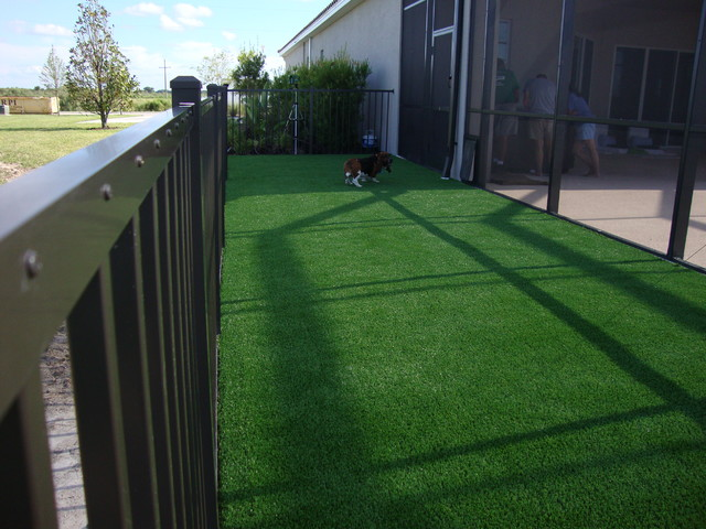 artificial grass for dogs Landscape Contemporary with artificial dog grass artificial