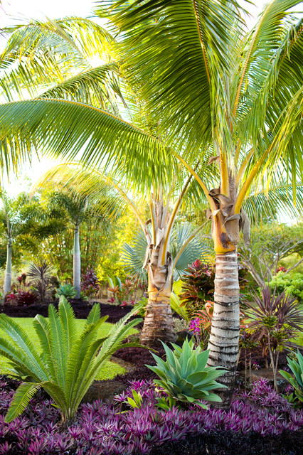 artificial palm trees Landscape Tropical with bushes coconut palm grass