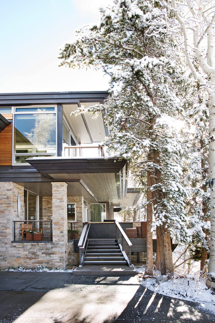 Aspen Roofing Exterior Contemporary with Entry Flat Roof Floor to Ceiling