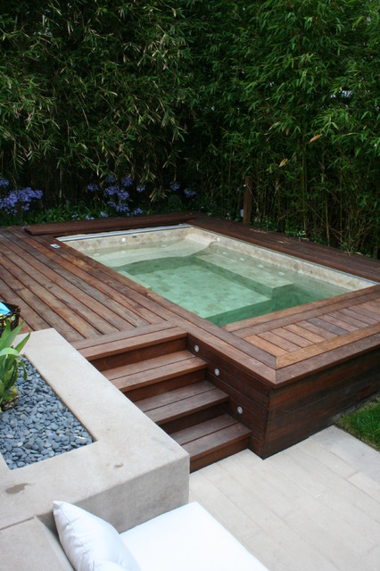 Balboa Hot Tub Pool Contemporary with Agapanthus Bamboo Built In