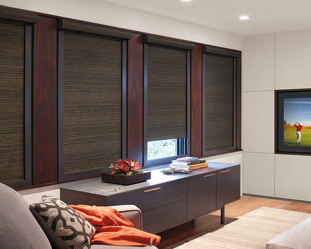 Blackout Blinds Home Theater Contemporary with Abda Best Blackout Blinds