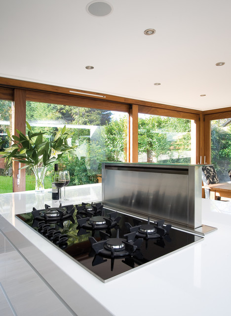 Downdraft Electric Cooktop Kitchen Contemporary with Indoor Outdoor Kitchen Island