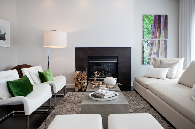 Firewood Carrier Living Room Modern with Area Rug Baseboards Bright