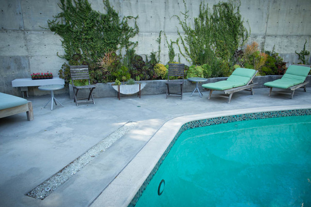 Hayward Pool Products Pool Midcentury with Artscape Drought Tolerant Erosion