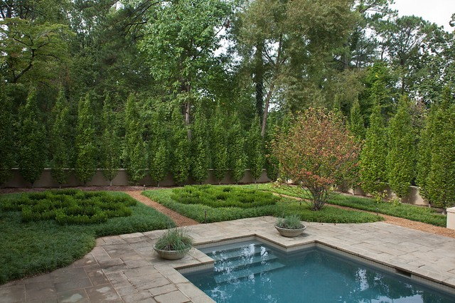 Holly Shrub Landscape Traditional with Bark Mulch Boxwood Hedges