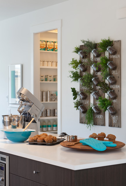 Mason Jars with Handles Kitchen Contemporary with Dark Wood Flat Panel