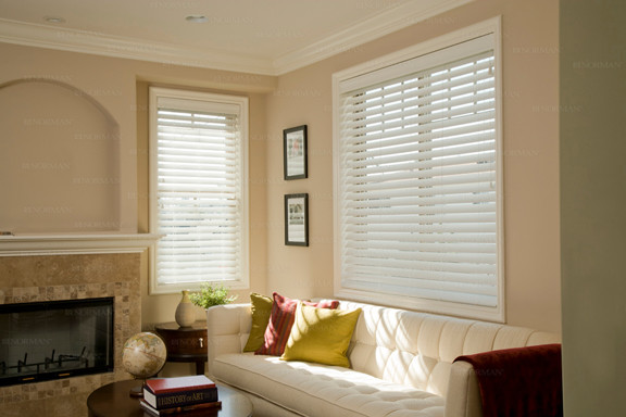 Norman Blinds Living Room Contemporary with 2 Blinds 2 Faux