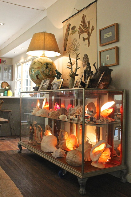 Plexiglass Display Case Living Room Eclectic with My Houzz