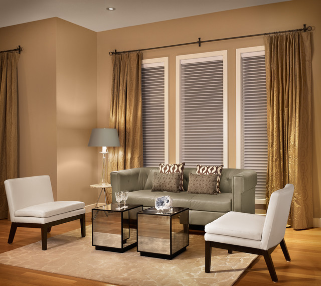 Sheer Blinds Living Room Contemporary with Area Rug Beige Curtain