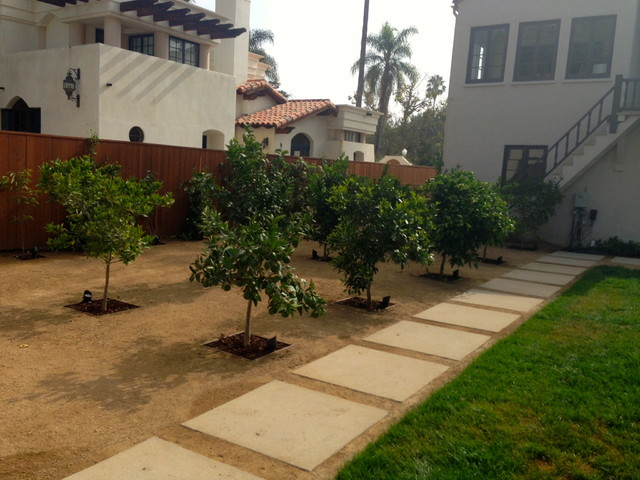 Tlc Lawn Care Landscape Modern with Architectural Elements Bed Plants