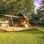 Gorilla Playsets for Traditional Kids