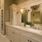 Home Depot Bathroom Mirrors for Traditional Bathroom
