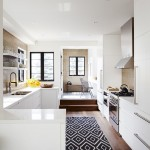 Indoor Outdoor Rugs with Transitional Kitchen and Soffit