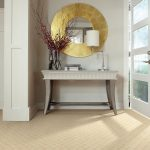 Lowes Area Rugs with Contemporary Entry And