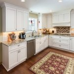 Rug Doctor Mighty Pro X3 with Traditional Kitchen and  Dog Bowl  Kitchen Rug  Plato Prelude  Santa Cecelia  Maniscalo Barosa Valley
